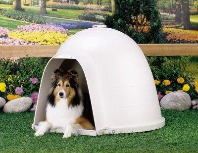 Petmate Dogloo Xt Large Dog House Products Igloo Dog House