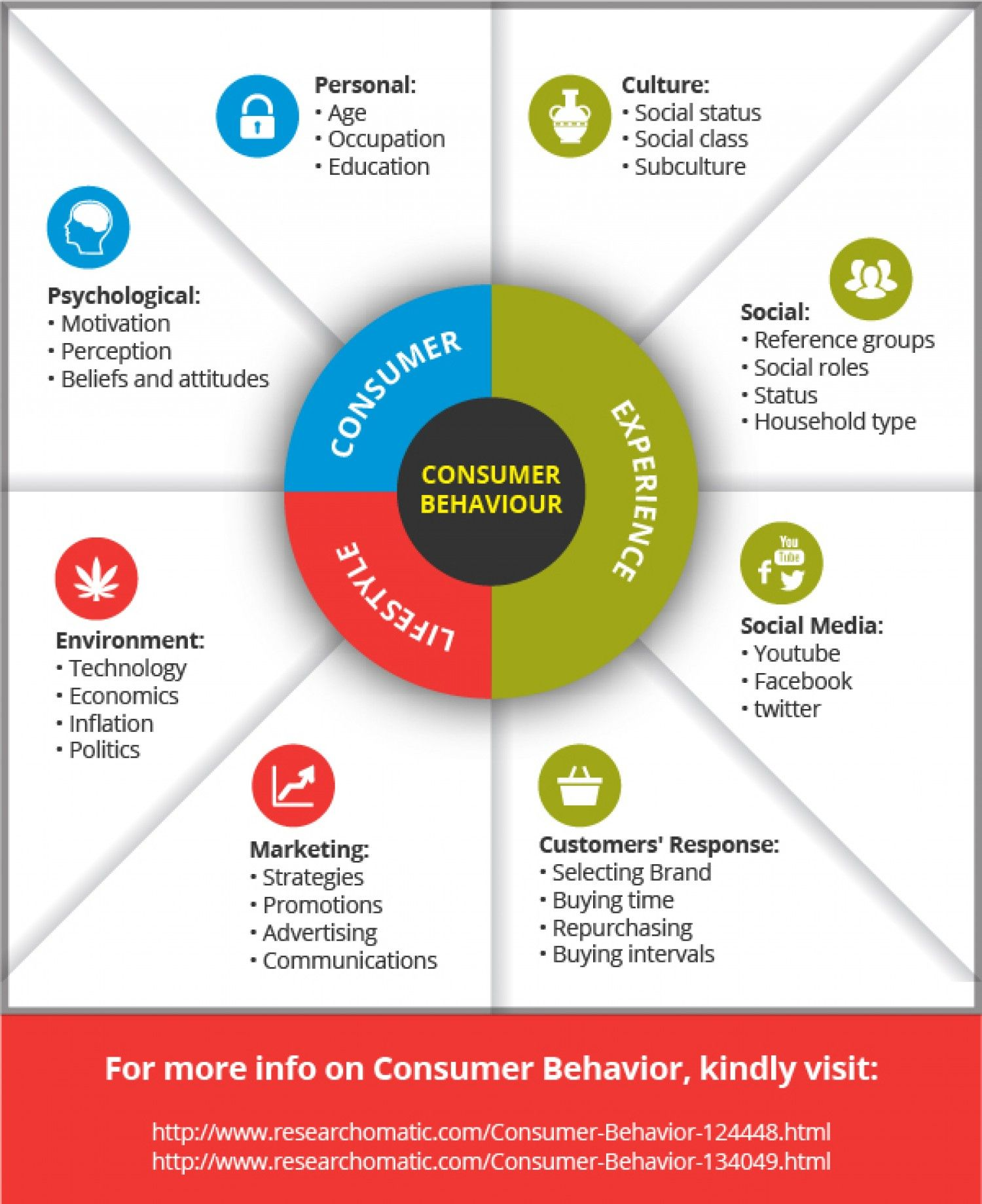 Consumer Behavior Infographic