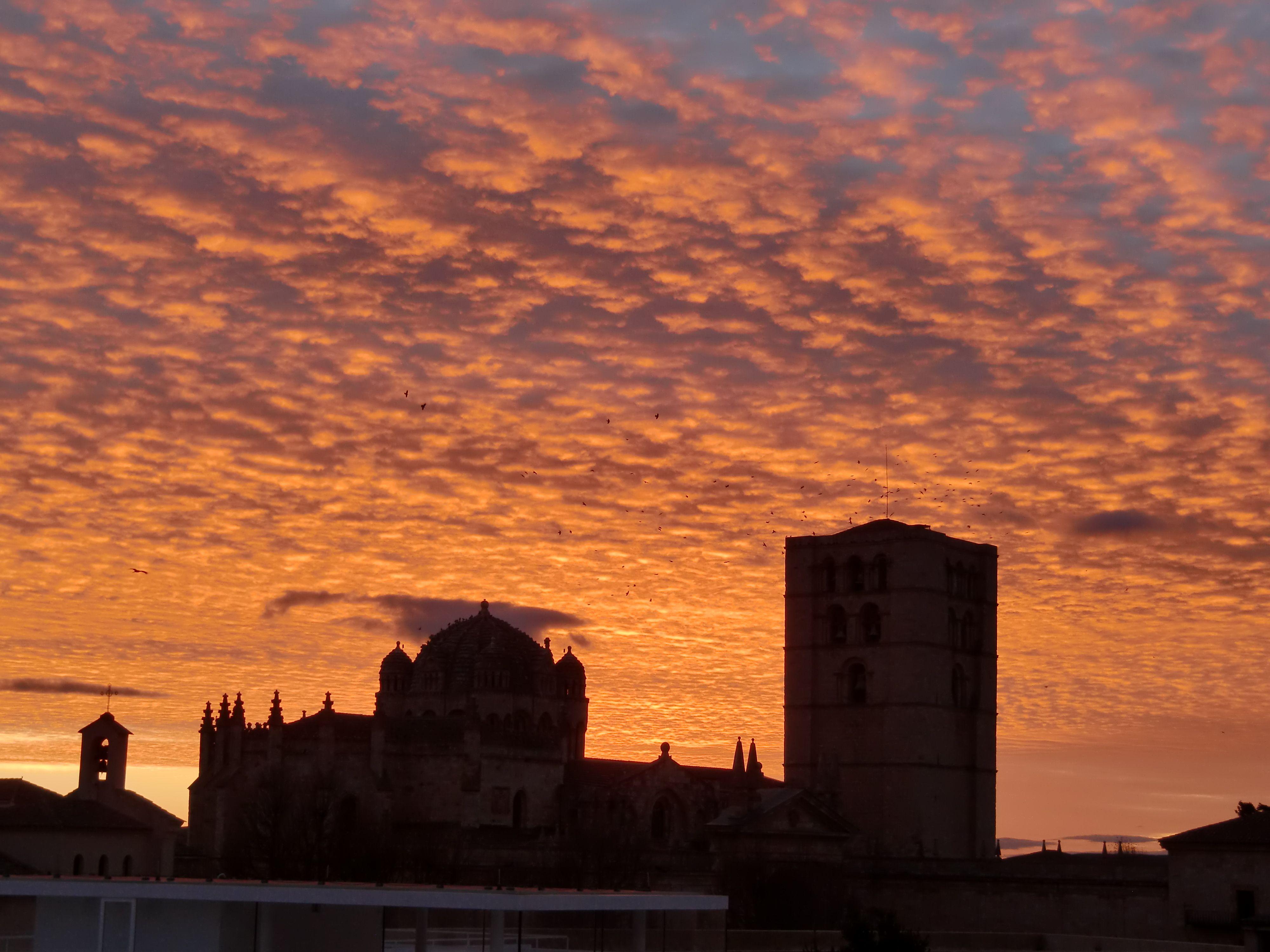 Catedral de Zamora (Spain)