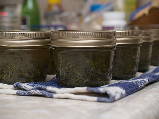 White Wine & Herb Jelly....sounds delish!