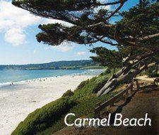Restaurants Bars In Carmel By The Sea California