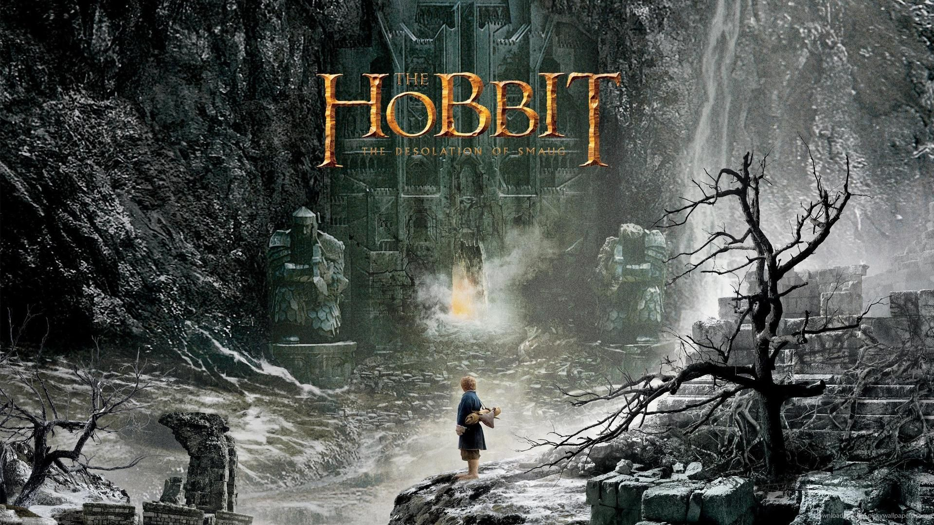 Download 1920x1080 The Hobbit Desolation Of Smaug Wallpaper