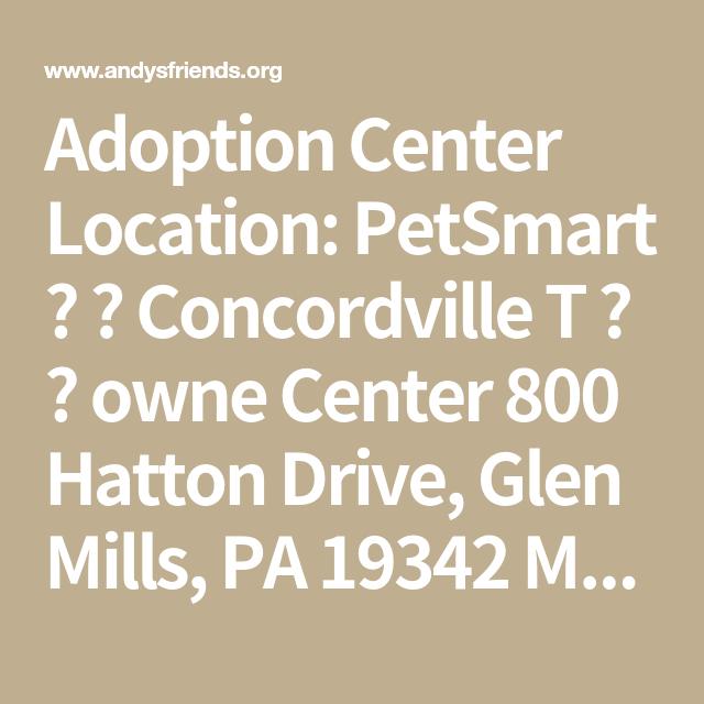 Adoption Center Location Petsmart Concordville T Owne Center 800 Hatton Drive Glen Mills Pa 19342 Mailing Addres Cat Rescue Petsmart Adoption Center