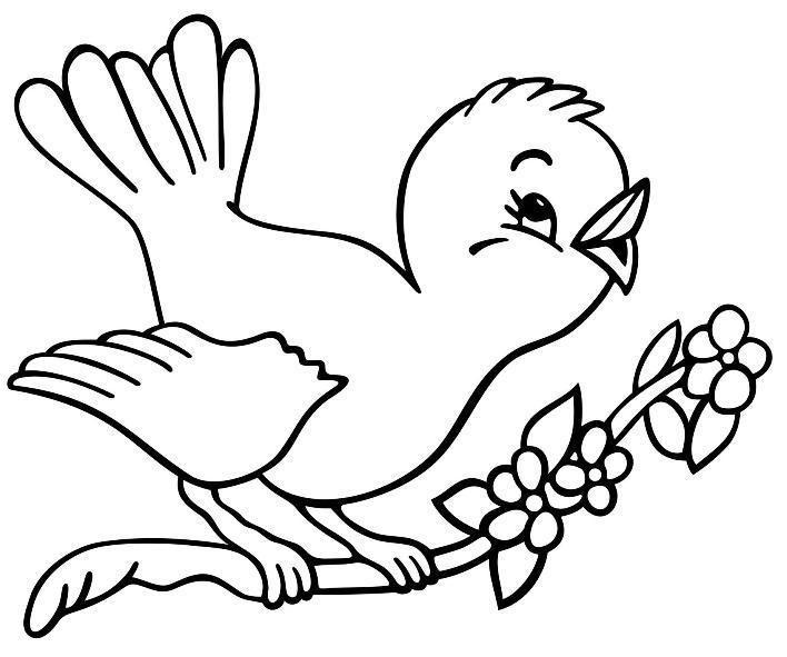 Gambar Mewarnai Hewan Bird Coloring Pages Animal Coloring Pages Spring Coloring Pages