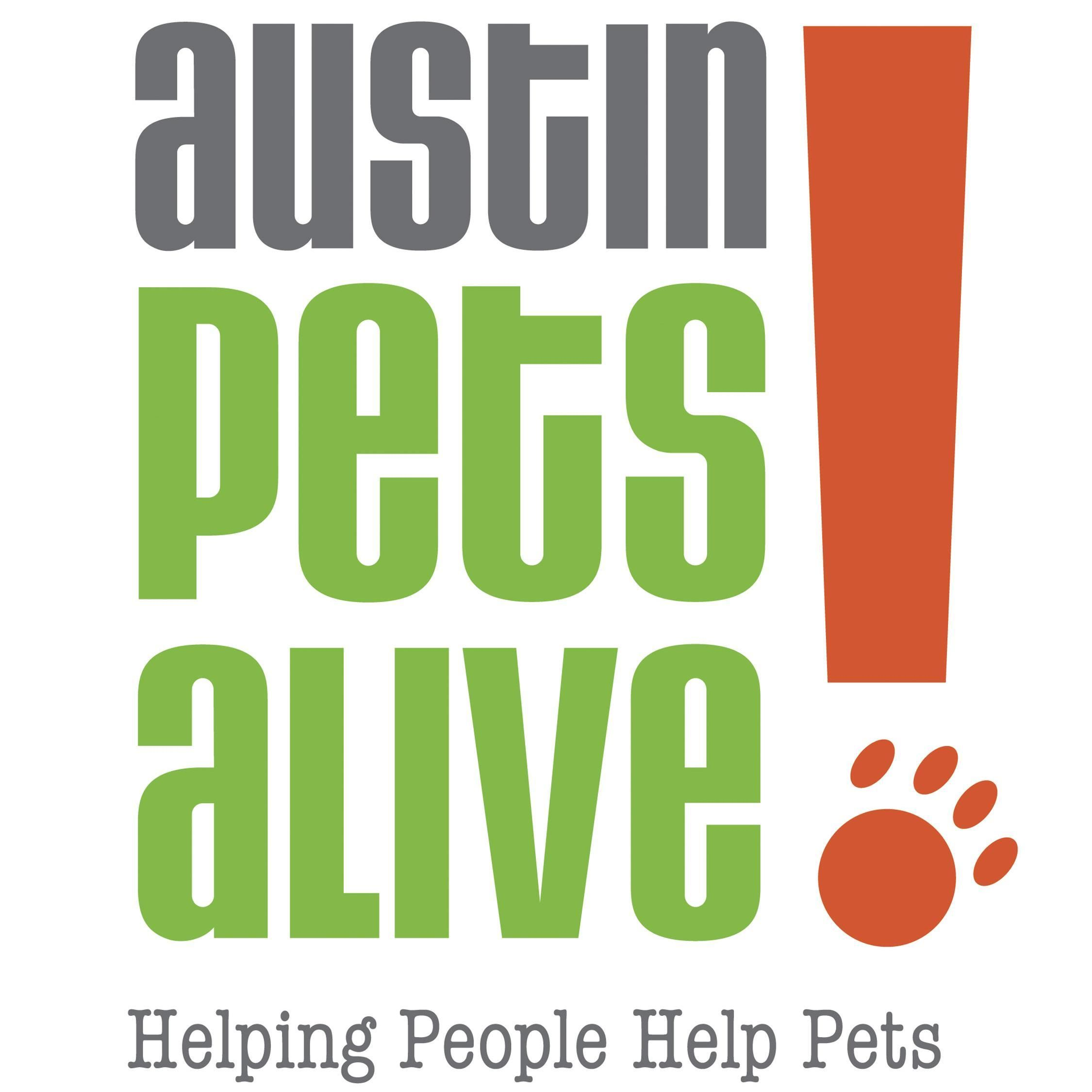 MaddieCam Austin Pets Alive! Pets, Dogs, Animals