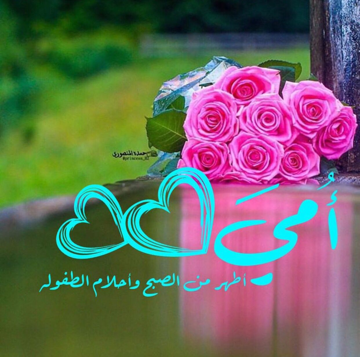 Pin By Daralzeen On رمزيات اسلاميه Flowers Rose Mom And Dad