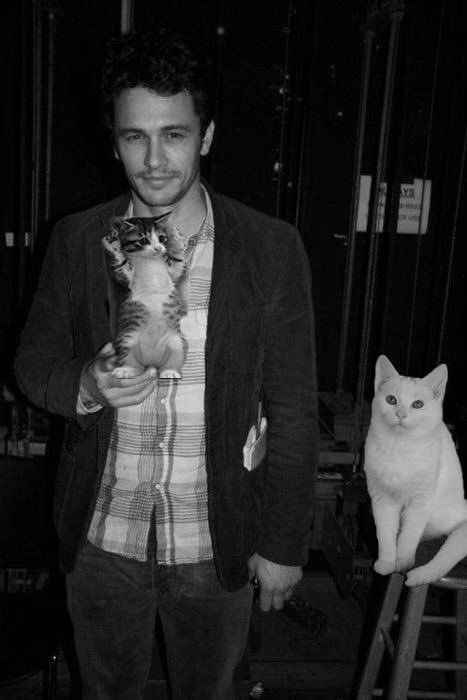 James Franco | Men with cats, Celebrities with cats, Cat ...