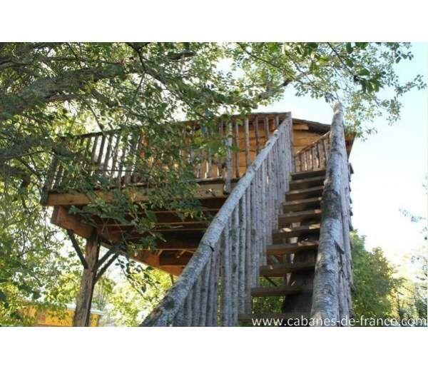 Cabane Ecureuil, cabane dans les arbres dans le Loiret au Family