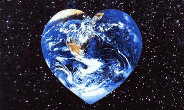 Money Saving Energy Efficient Window Treatments Earth Day Peace