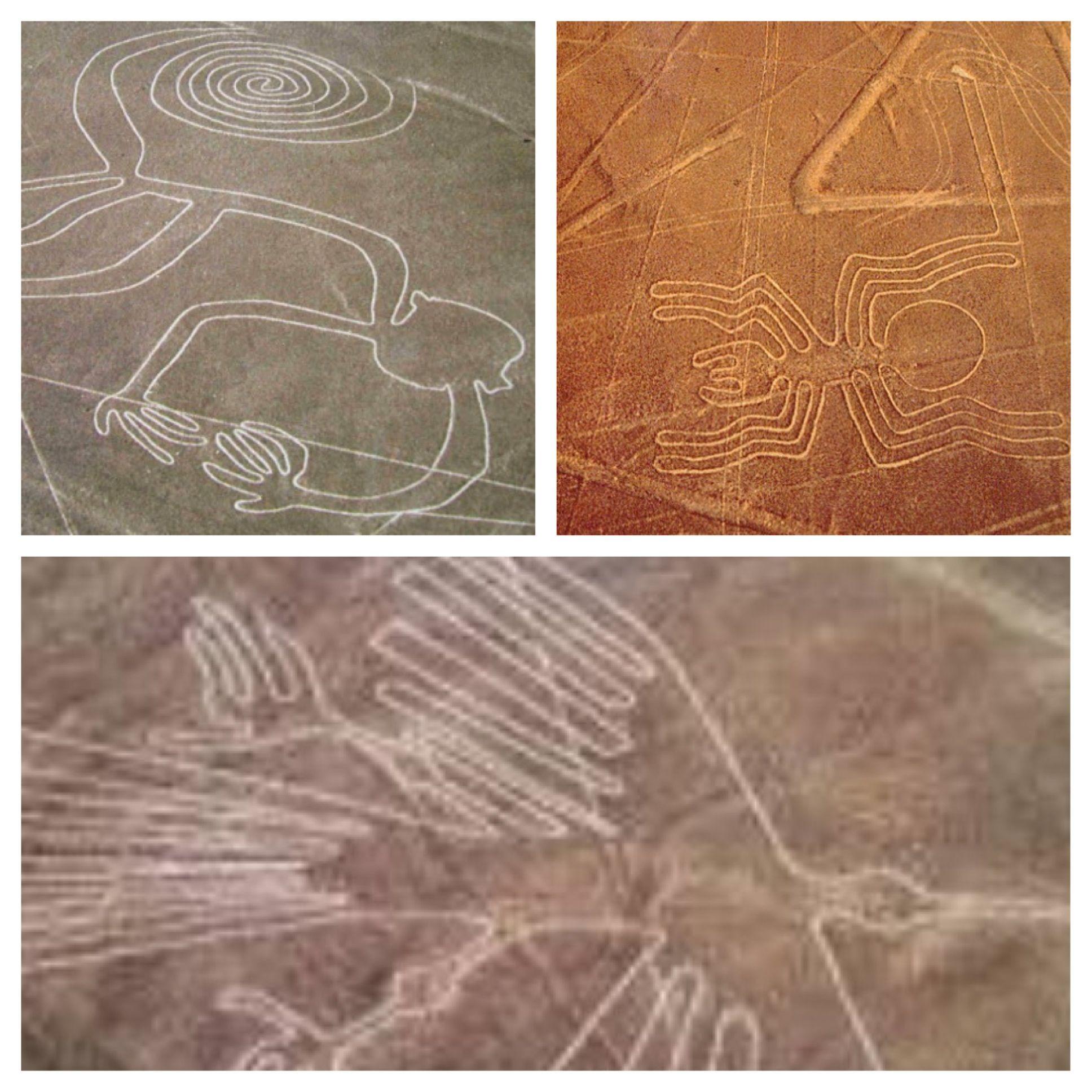 Lineas De Nazca Las Lineas De Nazca Son Dibujos Enormes En La Tierra Necesito Volar 31 Para Ver Los Dibujos Porque Son Mu Lineas De Nazca Dibujos Serpientes