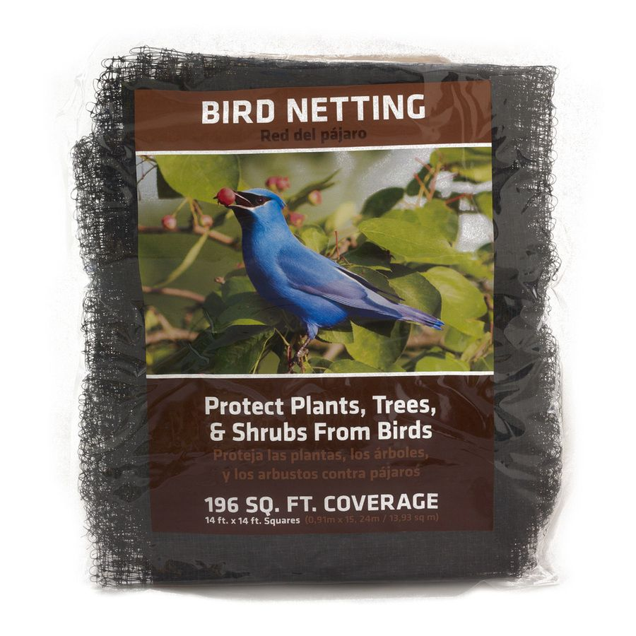 Keep the chickens out of flower beds with bird netting