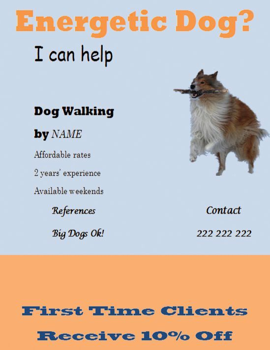 Professional dog walking flyer template Dog walking flyer