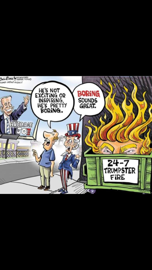 Pin By Jill Bolger Delozier On Trump In 2020 Anti Trump Meme Political Cartoons Political Art