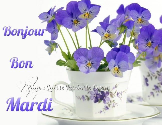 Bonjour Bon Mardi Mardi Fleurs Pensees Tasse Friends