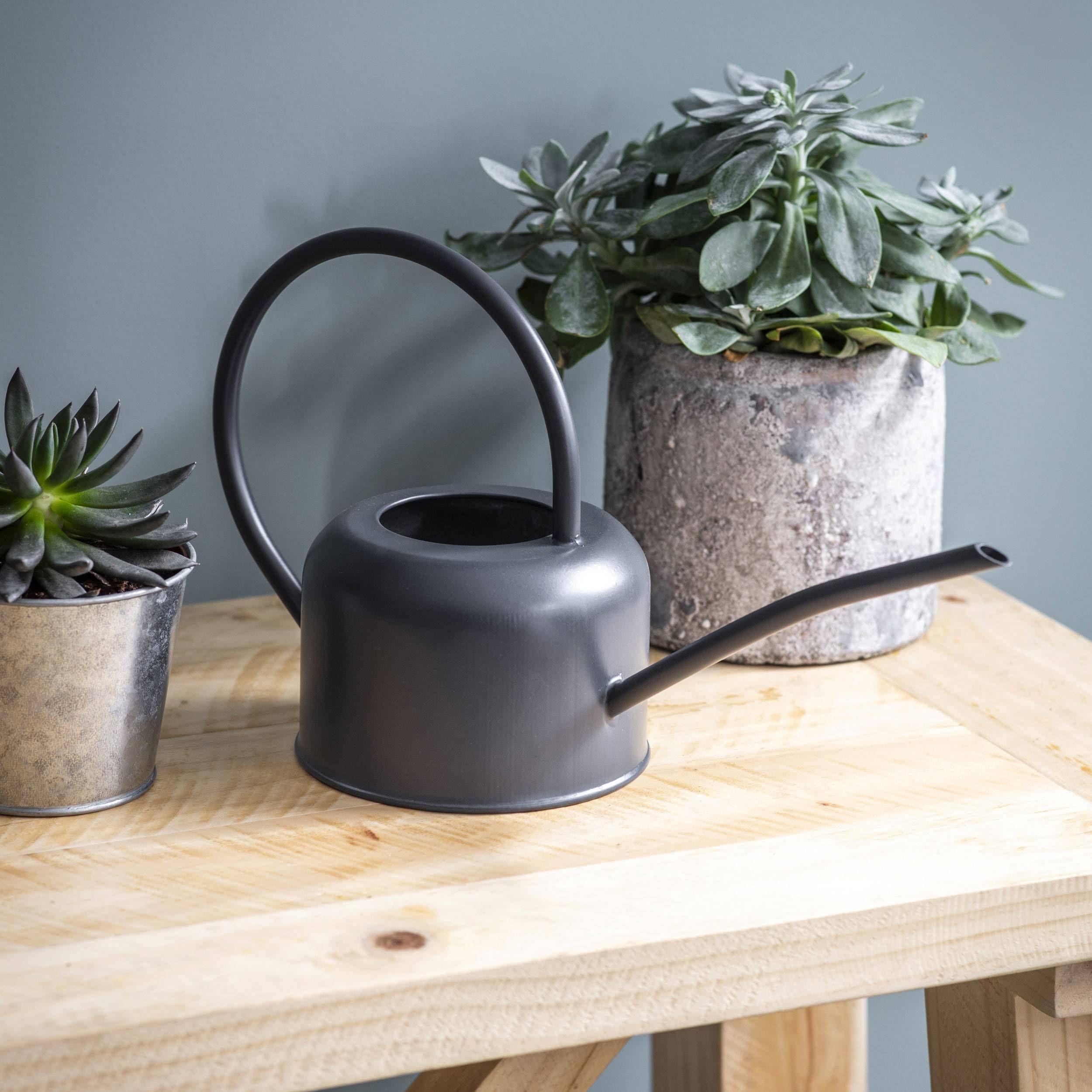 1l Indoor Watering Can Indoor Watering Can Indoor Watering House Plants Indoor