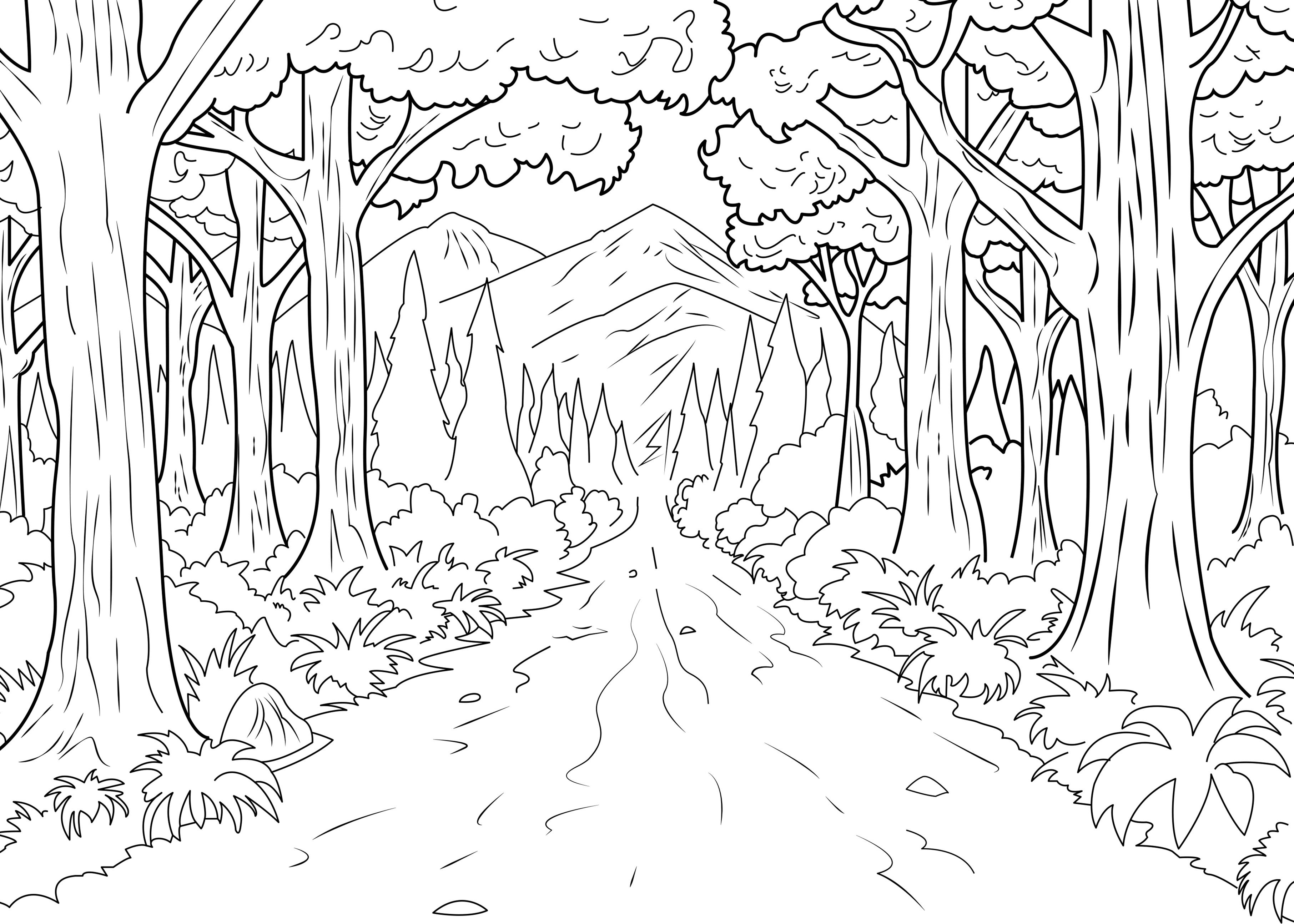 Jungle et for t coloriages difficiles pour adultes coloriage adulte foret - Dessin de foret ...