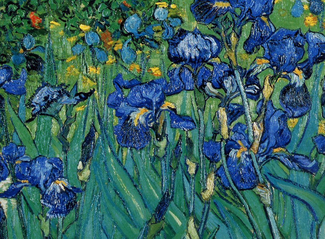 Lesson objective can i re create the various lines in a vincent vincent van gogh iris detail de vincent van gogh artists art might just art reviewsmspy