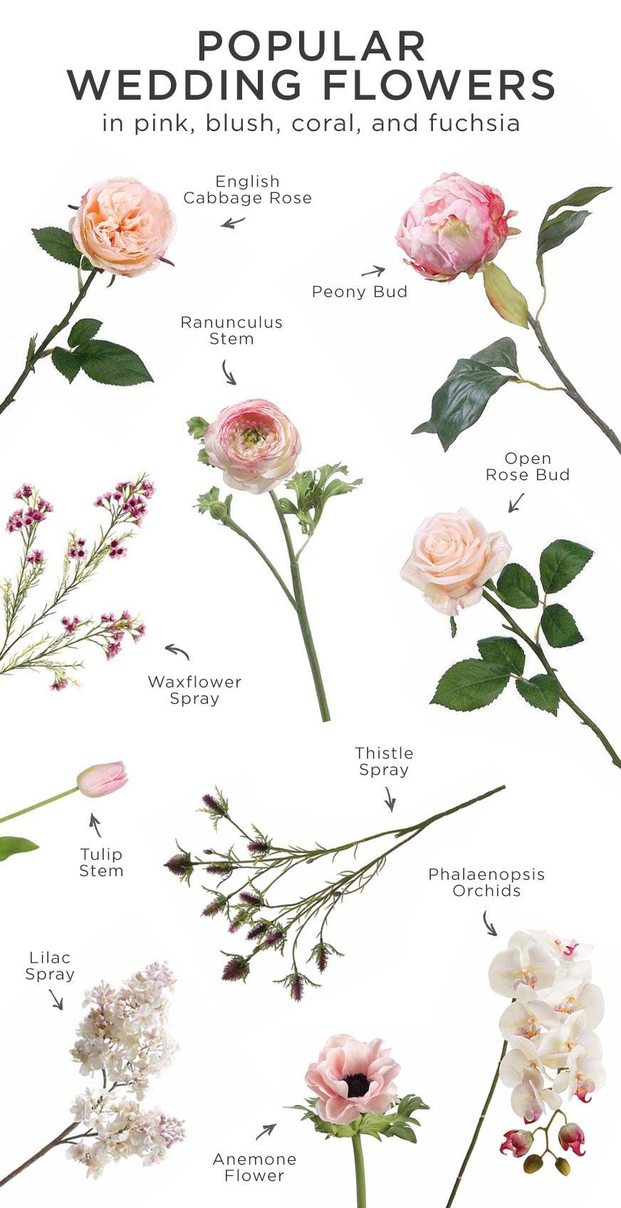 Pink Is Perfect For Any Wedding Here A List Of The Most Por Flowers In Blush C And Fuchsia