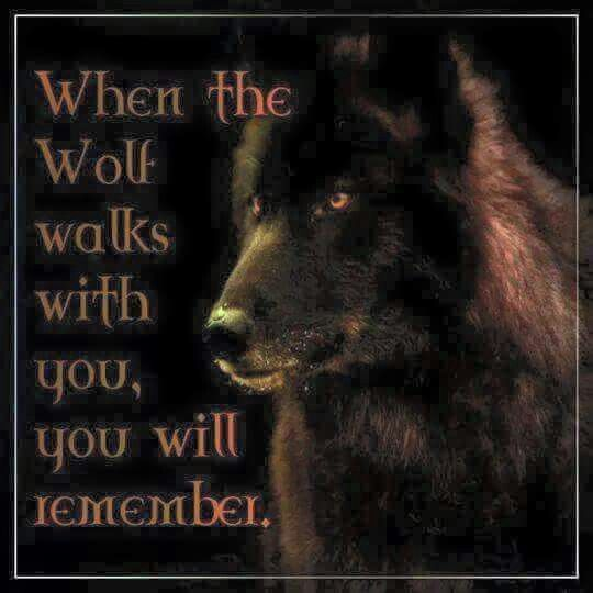 Tattoo Quotes Wolf: Pin By Brenda Shutts On Indians