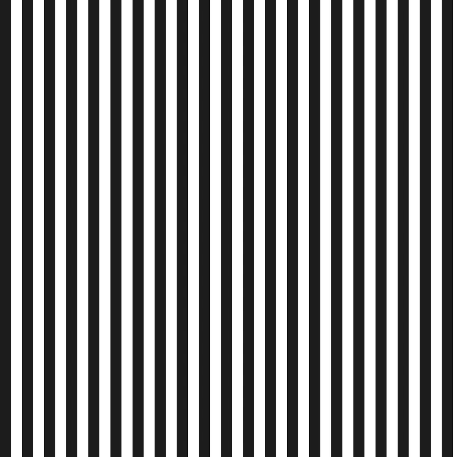 black and white stripes pictures