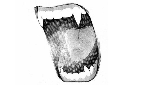 Mouth With Fangs Drawing Mouth Drawing Anime Mouth Drawing Smile Drawing