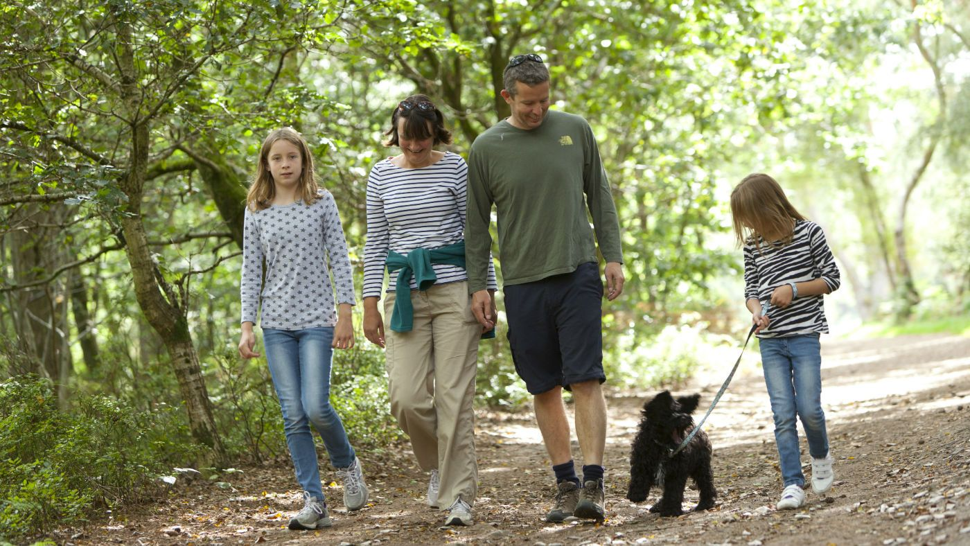 Your Dog Is Welcome At Lanhydrock Dogs Dog Friends Dog Walker