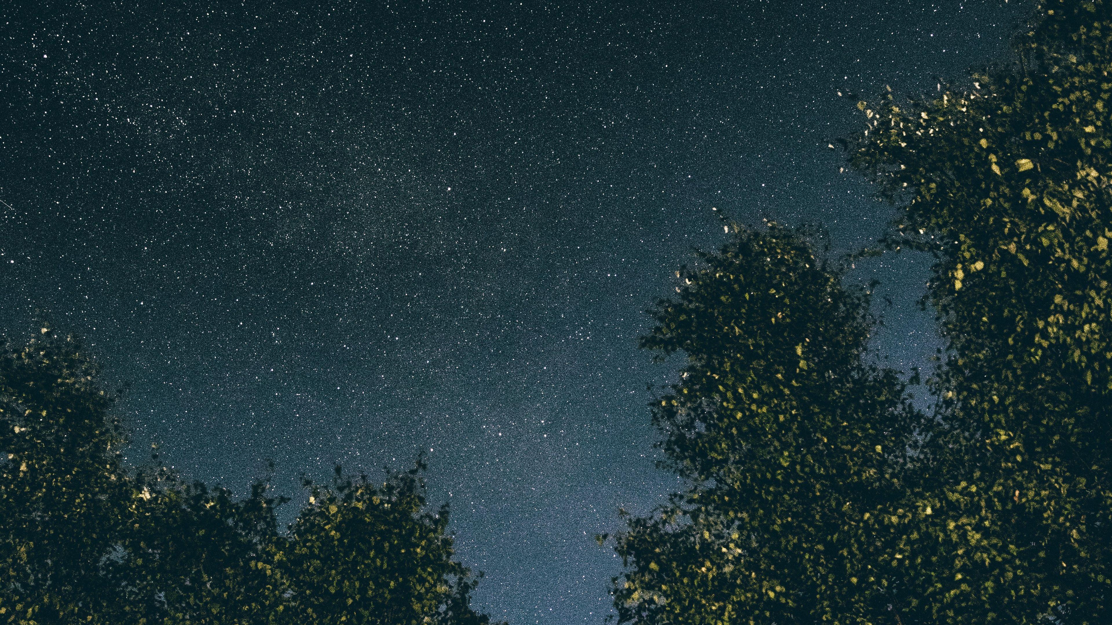 Trees Starry Sky Stars Night 4k Trees Stars Starry Sky Starry Sky Sky Starry Wallpaper night starry sky lake trees