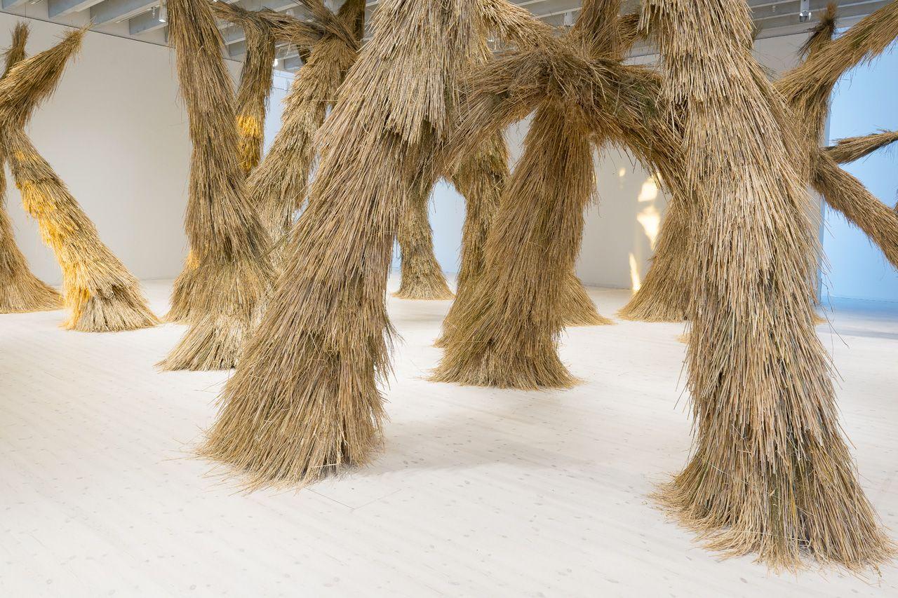 Campanas: Woods, Bildmuseet, installation view