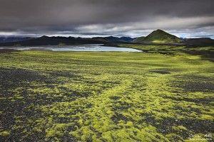 Green moss pastures near Landmannalaugar.