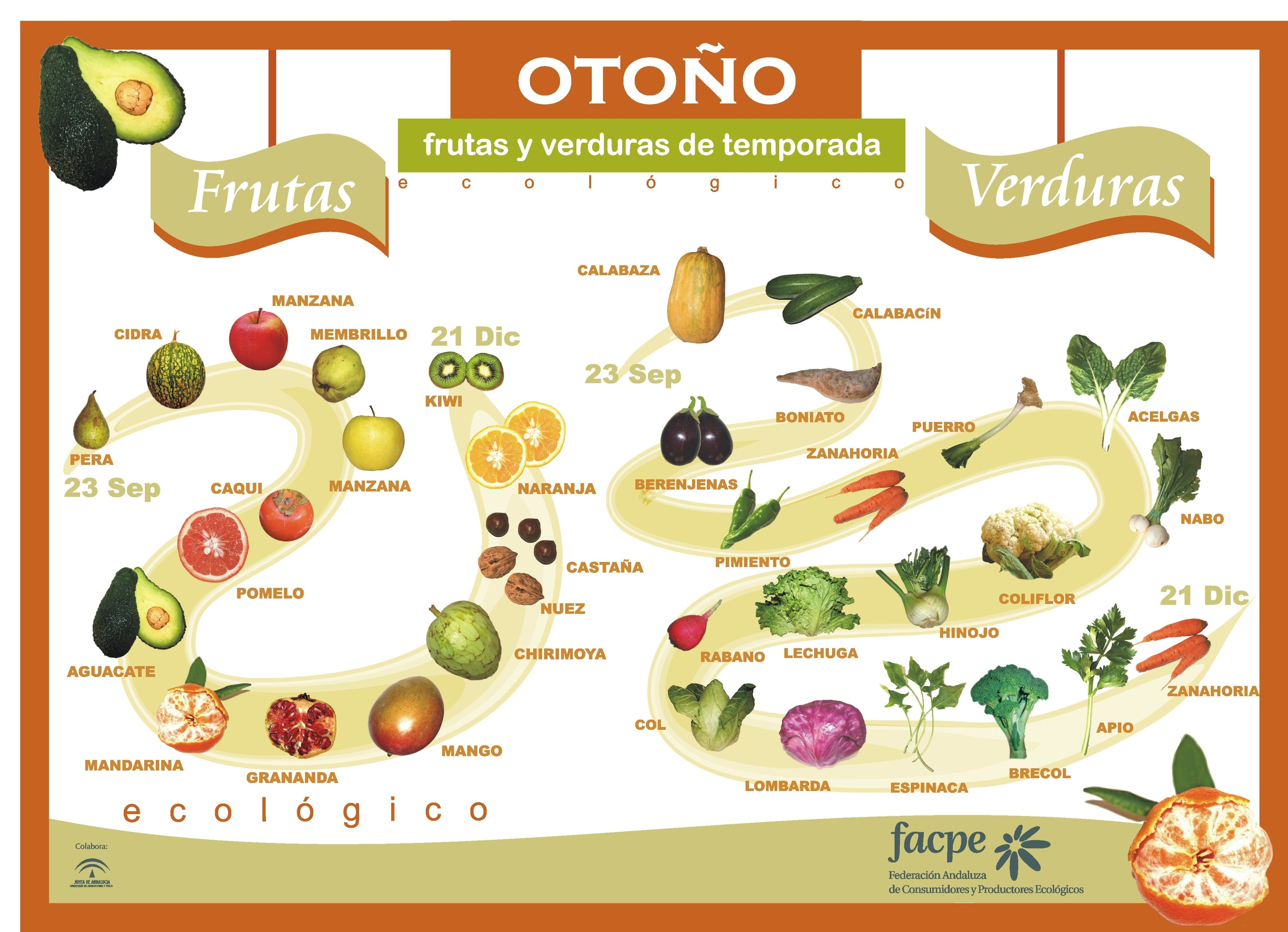 Otoño Frutas y verduras de temporada. http://www.pegonatura.es/