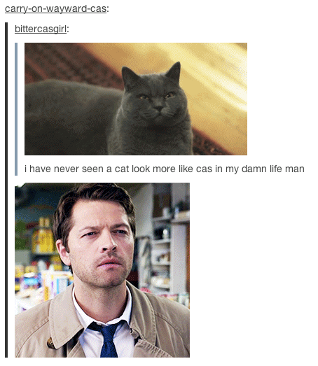 misha collins meme car - photo #49