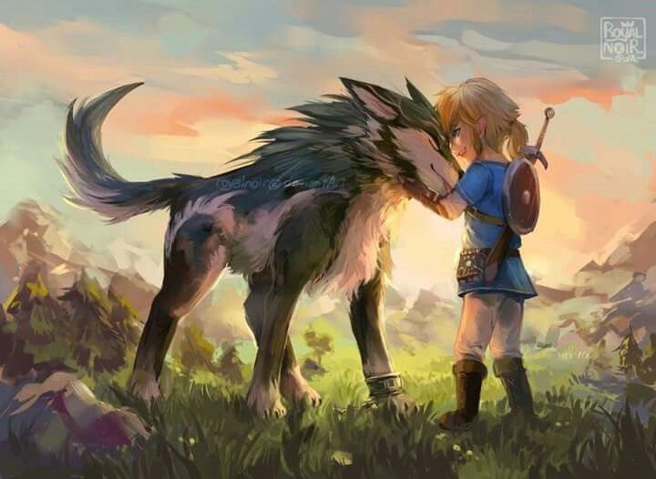Breath Of The Wild I Want To Pet Twilight Link Legend Of Zelda Breath Breath Of The Wild Zelda Twilight Princess