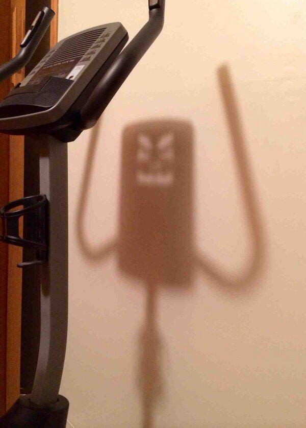 Gym is evil - daylol.com