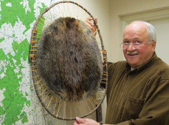 Hooped Beaver Pelts for Sale - Authentic Adirondack Hooped Beaver Pelt