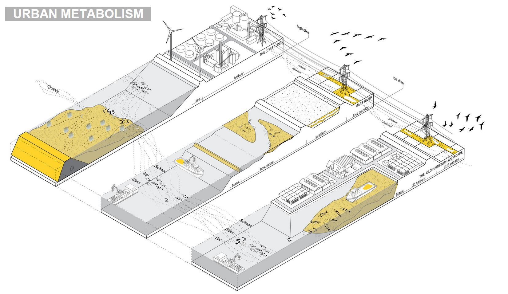 Stupendous Urban Metabolism By Field Operations Archi Graphic Diagram Wiring Digital Resources Funapmognl