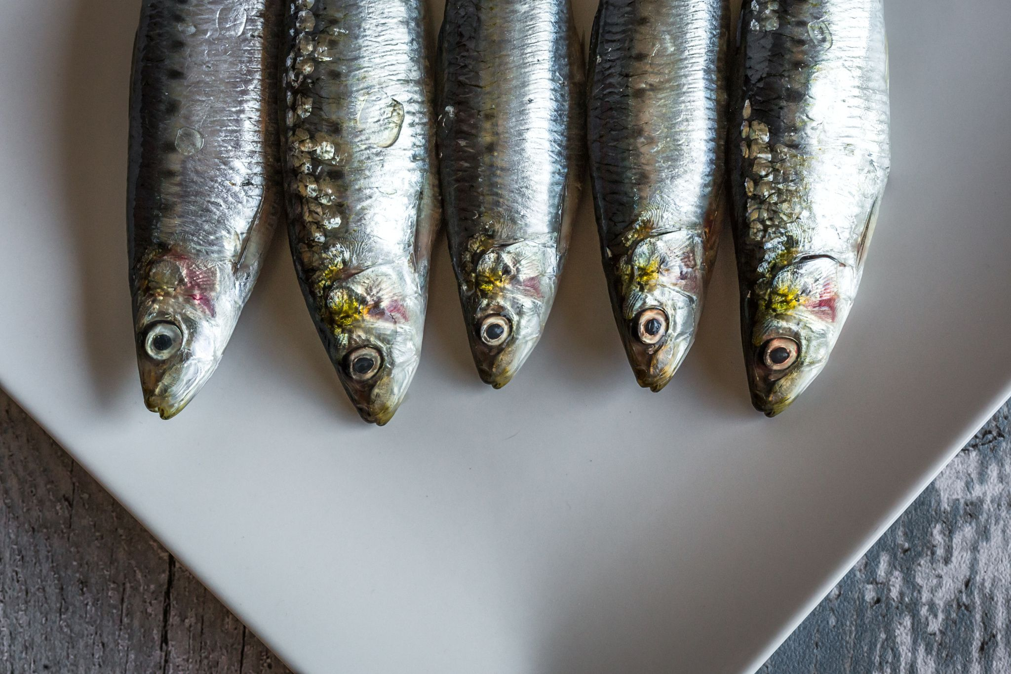 raw sardines with parsley and mint - raw sardines with parsley and mint on plate…