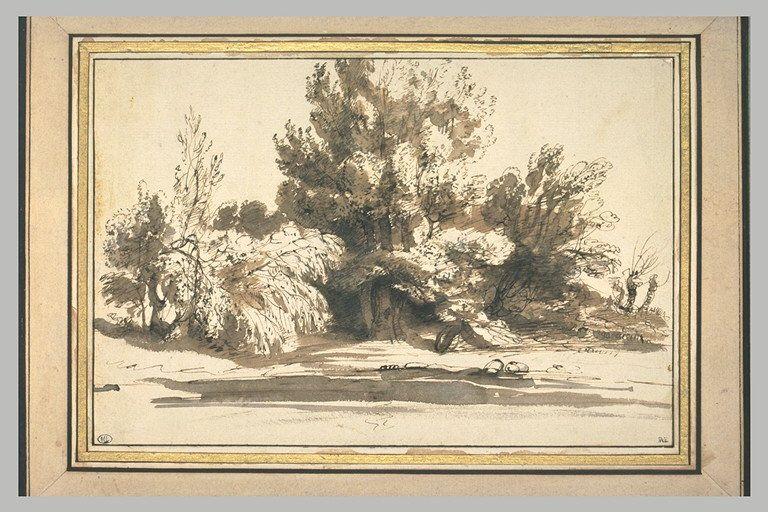 BOISSIEU Jean-Jacques de Ecole française Etude de troncs d'arbres