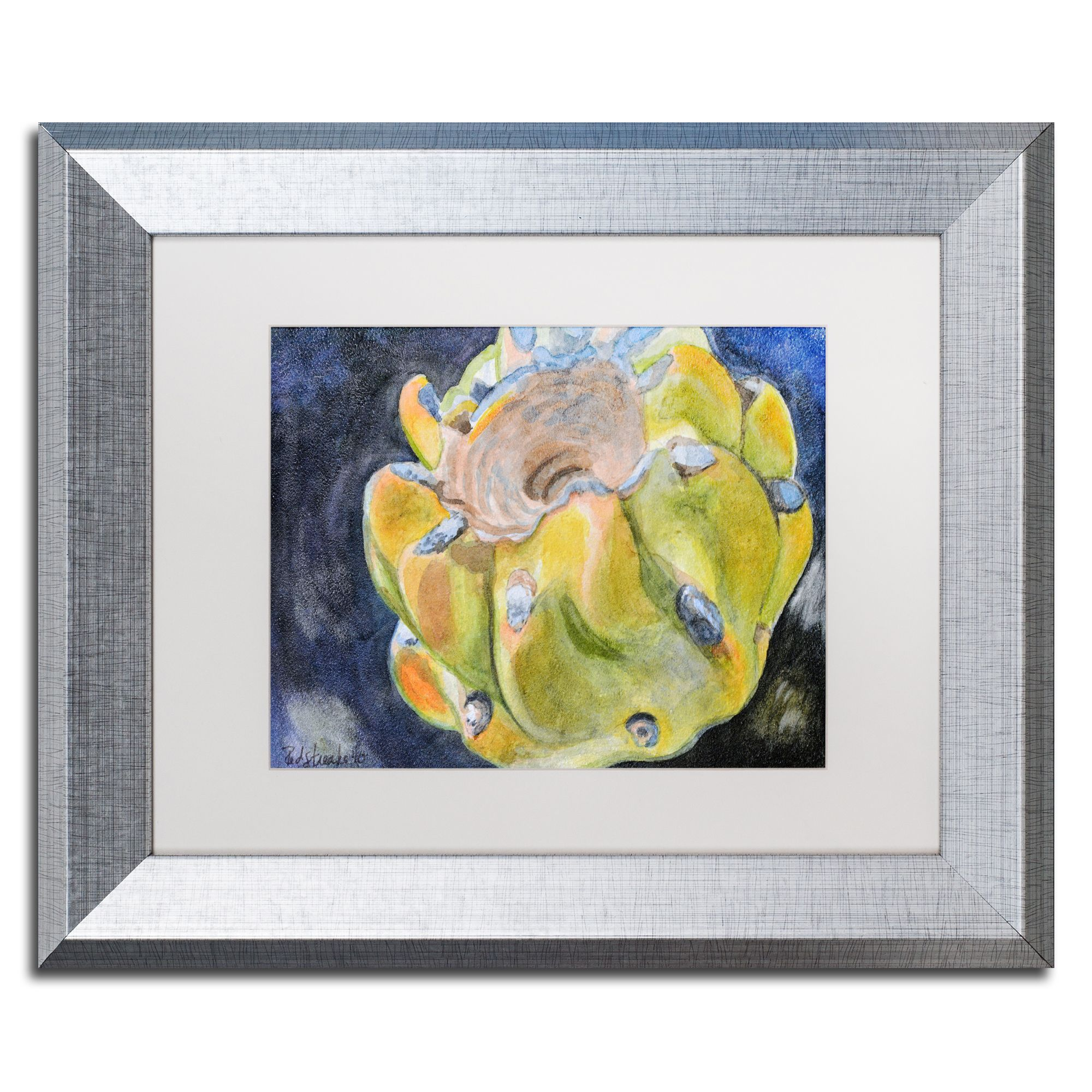 Jennifer Redstreake \'Cactus Fruit\' Matted Framed Art | Products ...