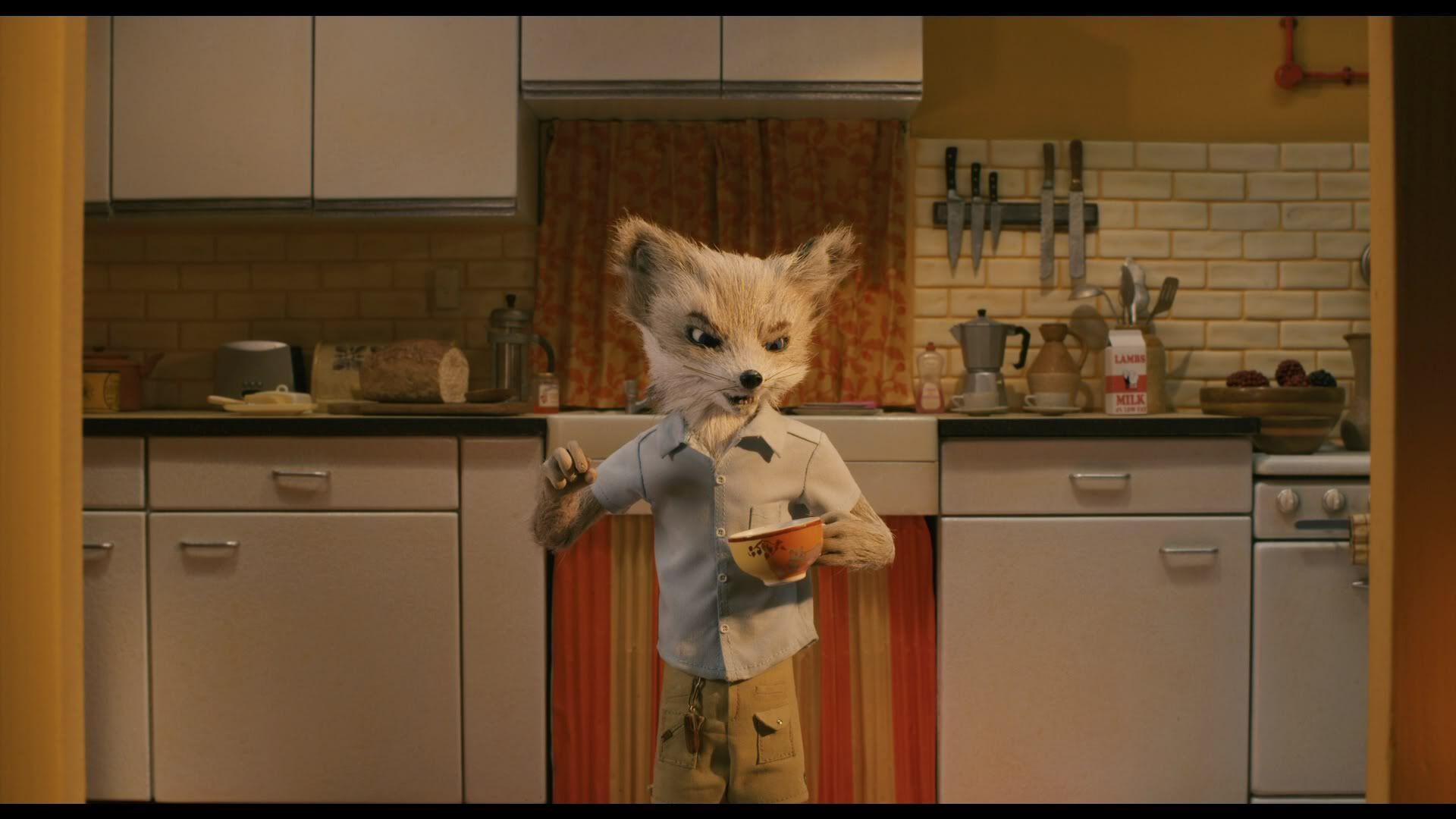 Fantastic Mr Fox Theme Song 7 Jpg 1920 1080 Wes Anderson Films Fantastic Mr Fox Fantastic Mr Fox Movie