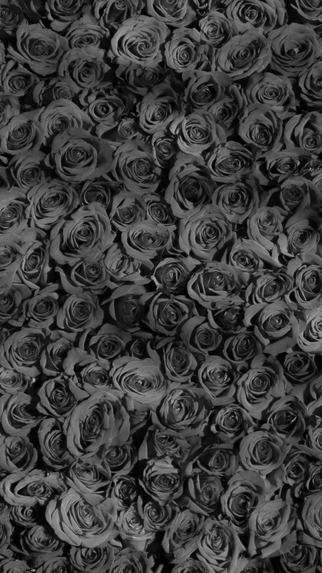 Rose Dark Bw Pattern Background Iphone 8 Wallpaper Grey