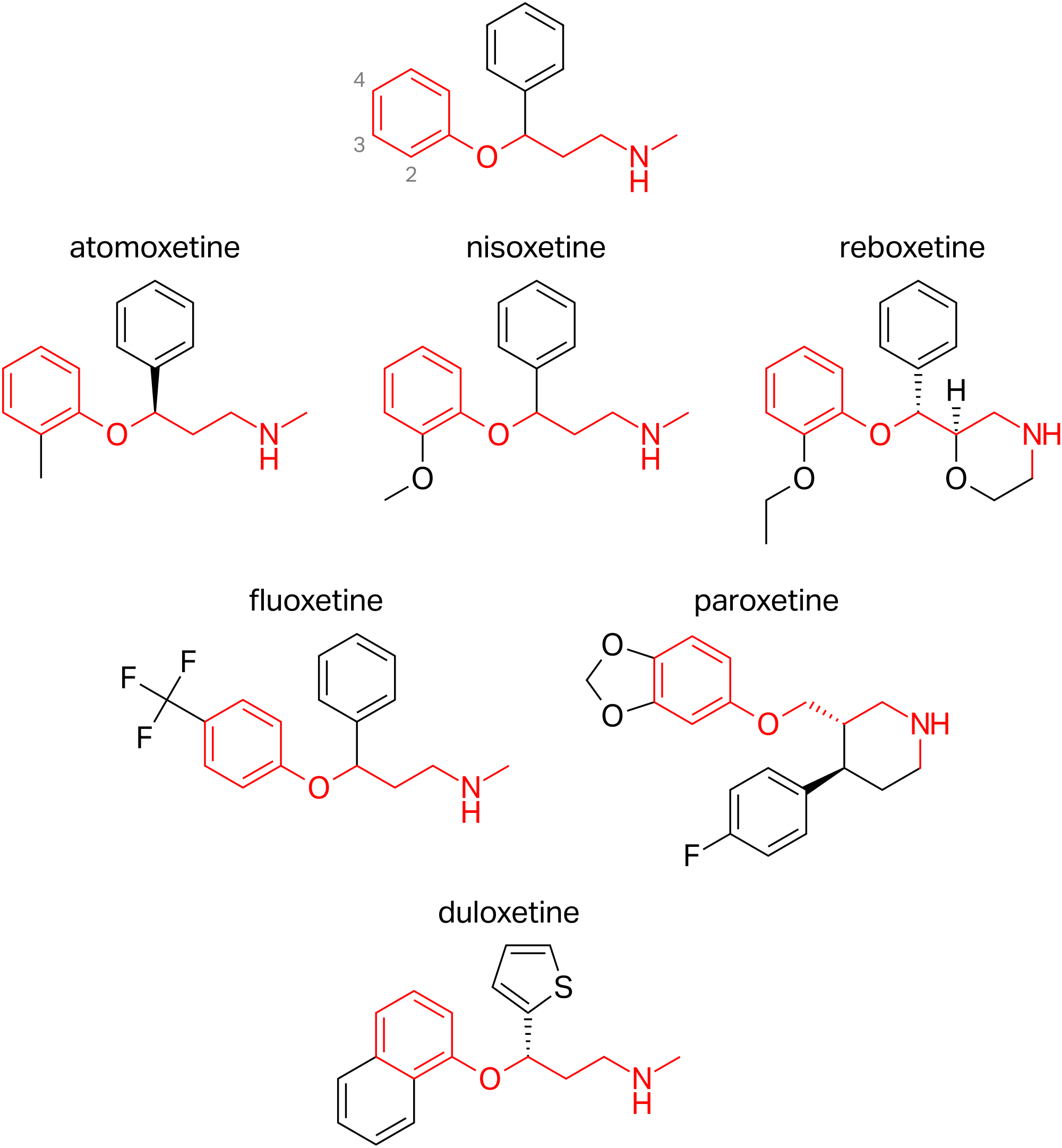 Aryloxypropanamine scaffold and agents containing it