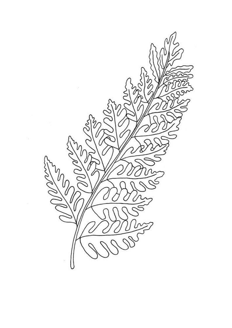 Fern Leaf Print Line Art Print Bracken Wall Art Black And White Drawing Minimalist Bedroom Decor Leaf Art Print Botanical Line Drawing Simple Line Drawings Botanical Line Drawing Leaf Drawing
