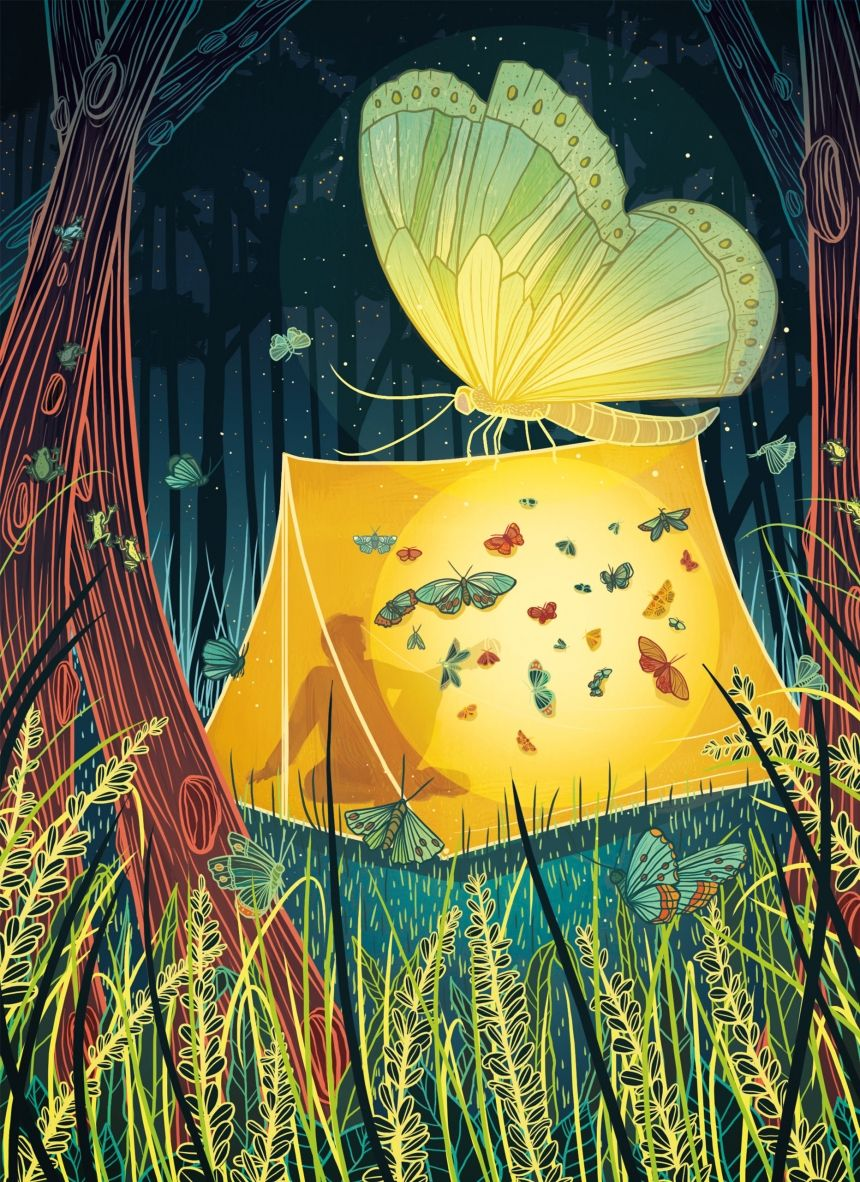Wistful wonders: The tranquil illustrations of Kailey Whitman ...