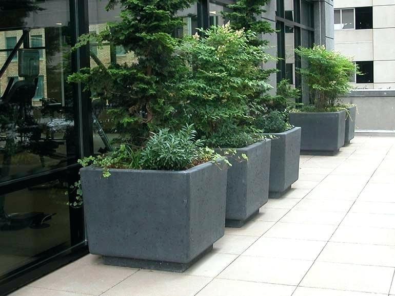 Large Planters Cheap Decoration Concrete Planters Cement Planter