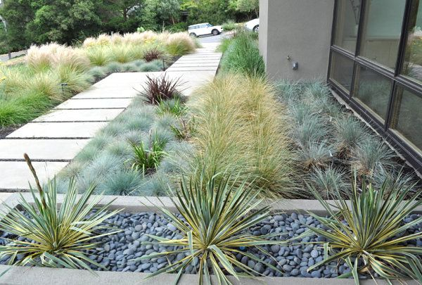 Modern xeriscaping ideas for your outdoor space outdoor for Modern grasses landscaping
