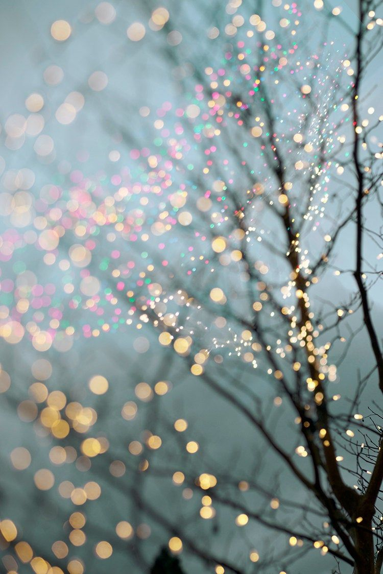 Winter Photography - Holiday Fairy Lights in Trees, Festive Winter Scene, Fine Art Landscape Photograph, Large Wall Art #fairylights