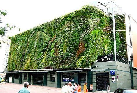vertical-garden - LES HALLES - Avignone