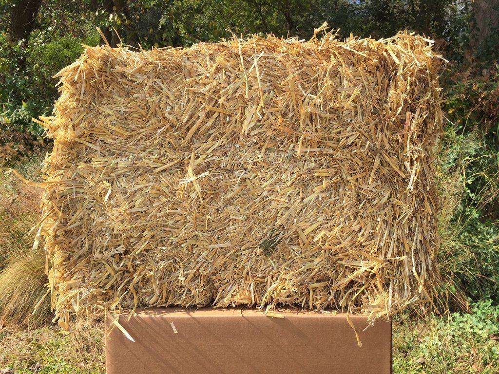 Barley Straw Bulk Bale Makes About 3 Bags Barley Baling Straw