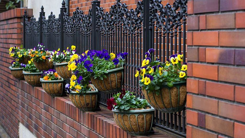 45 Beautiful Fence Planters Decorate Your Garden Fence Iron