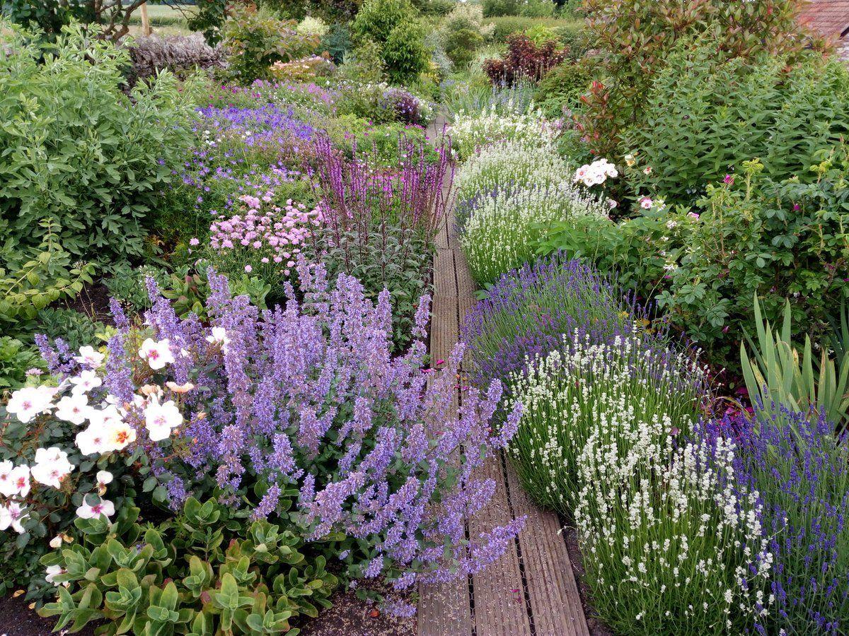 Ian And Teresa Moss On Twitter Front Garden Landscape Cottage Garden Design Garden Design